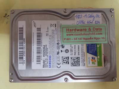phục hồi dữ liệu HD253GJ
