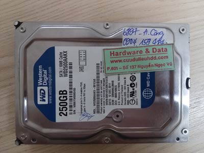 Cứu dữ liệu ổ cứng western 250GB