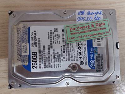 6991 Western 250GB hỏng đầu từ