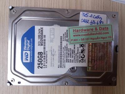 7025 Western 250GB đầu từ lỗi