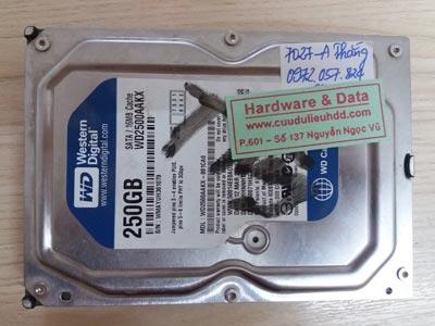 7027 Western 250GB hỏng đầu từ