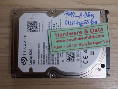 7042 Seagate 1TB Recovery nhầm