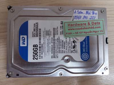 14 12 Western 250gb mất dữ liệu