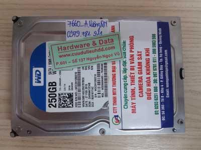 7660 Western 250GB bị virus mã hóa