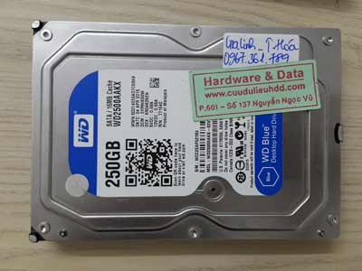 19-6 Western 250GB hỏng đầu từ