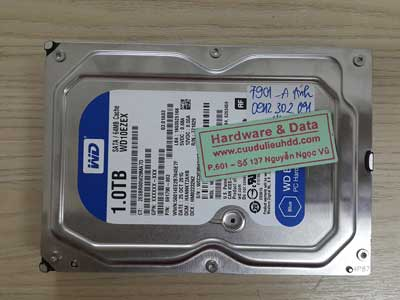 7901 Western 1TB lỗi windows