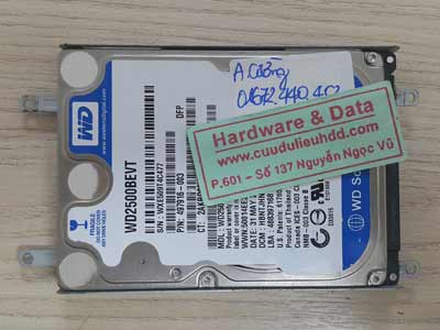 23-7 Western 250GB ghost nhầm