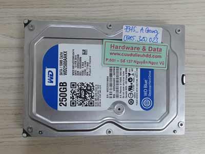 7975 Western 250GB đầu từ lỗi