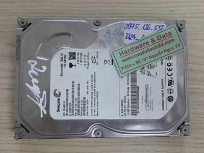 8124 Seagate 250GB