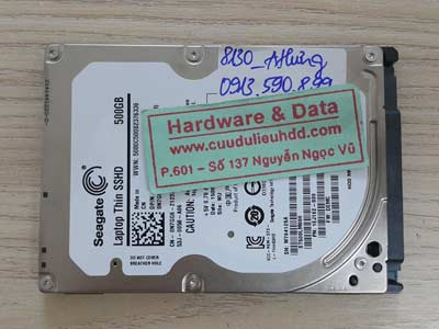 8130 Seagate 500GB