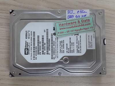 8133 Western 80GB