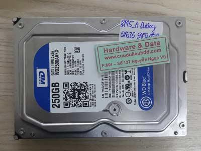 8145 Western 250GB
