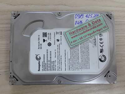 8176 Seagate 500GB