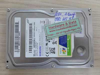 8181 Samsung 500GB