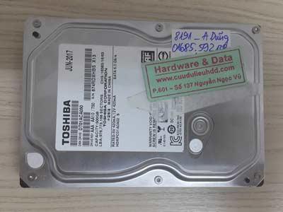 8191 Toshiba 500GB