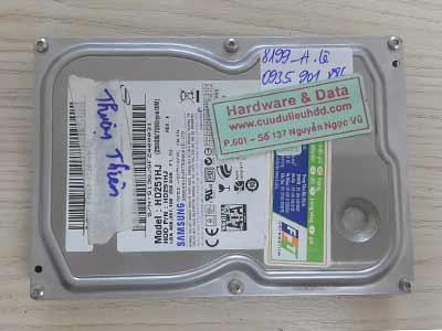 8199 Samsung 250GB