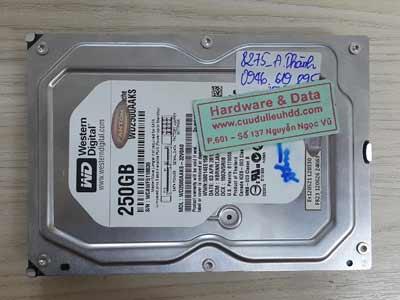 8275 Western 250GB