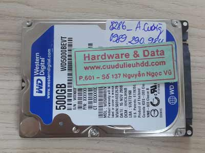 8286 Wester 500GB