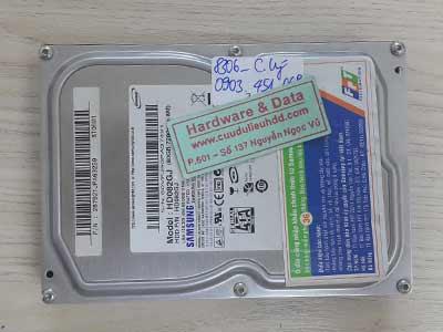 8306 Samsung 80GB