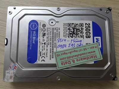 8314 western 250GB