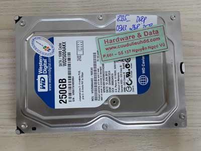 8335 Western 250GB