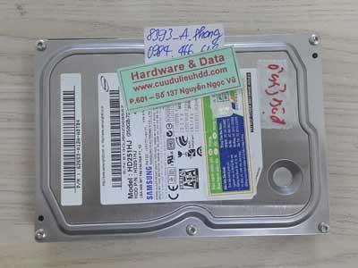8393 Samsung 250GB