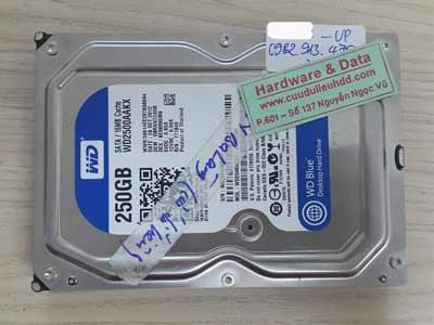 28-9 western 250GB