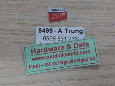 8499 The Samsung 256GB