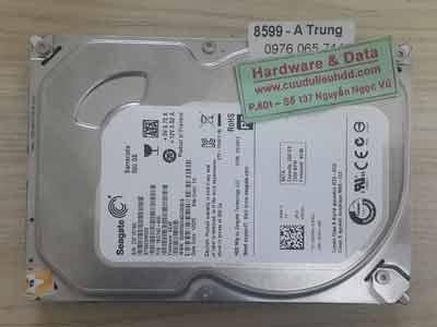 8599 Seagate 500GB
