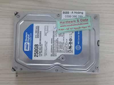 8689-Western-250GB