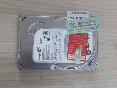 8718 Seagate 250GB