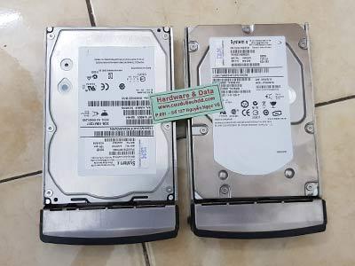 8771 SAS 600GB Raid1