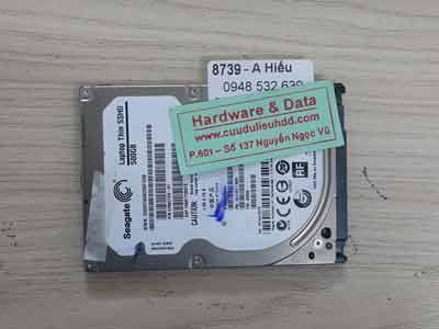 8739 Seagate 500GB