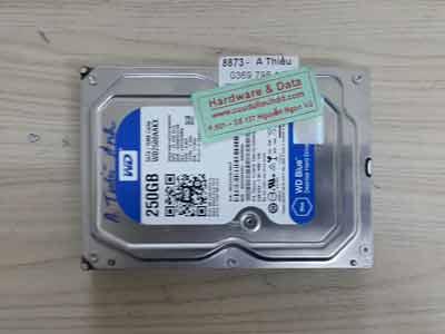 8873 Western 250GB
