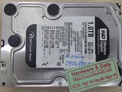 khôi phục dữ liệu ổ cứng Western 1TB format nhầm