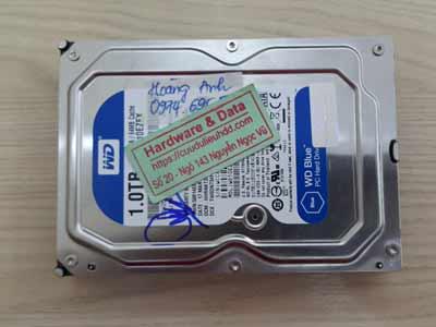 phục hồi dữ liệu ổ cứng western 1TB bị virus mã hóa