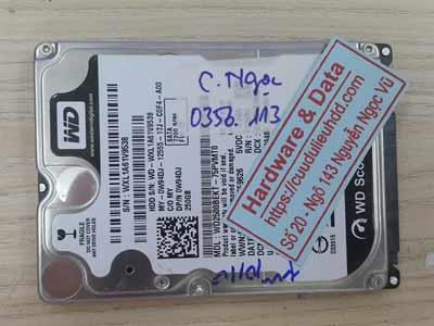 Lấy lại dữ liệu ổ cứng western 250GB đầu từ lỗi