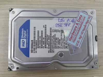 khôi phục dữ liệu ổ cứng Western 160GB chết cơ