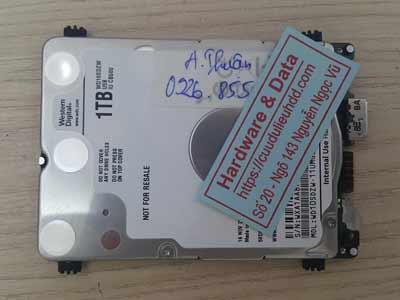 phục hồi dữ liệu ổ cứng Western 1TB hỏng đầu từ