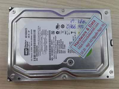 phục hồi dữ liệu ổ cứng Western 160GB virus mã hóa
