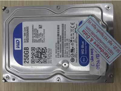 phục hồi dữ liệu ổ cứng Western 250GB virus mã hóa