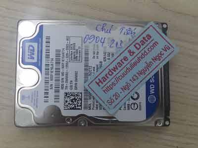 Khôi phục dữ liệu ổ cứng Western 320GB mất dữ liệu