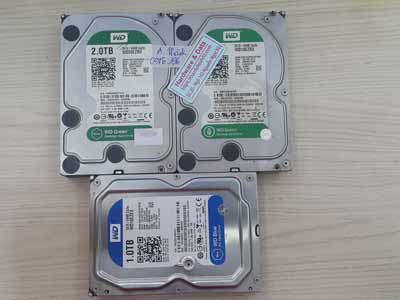 Khôi phục dữ liệu ổ cứng Western 2TB virus mã hóa