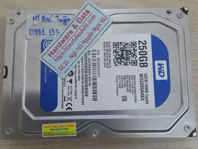 Cứu dữ liệu ổ cứng Western 250GB đầu từ lỗi