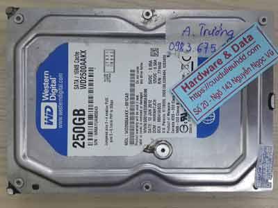 11069-Western-250GB