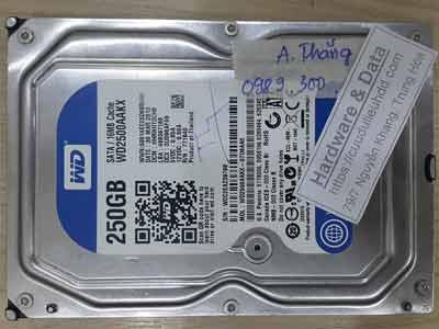11365-Western-250GB