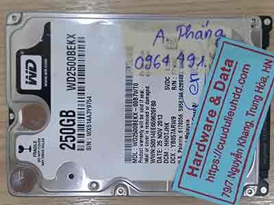 11462-Western-250GB