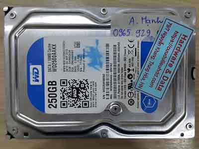 11475-Western-250GB