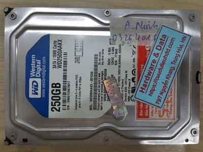 11711-WD-250GB