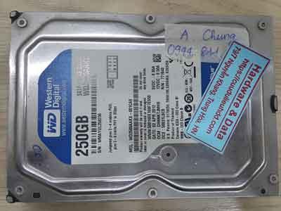11887-Western-250GB
